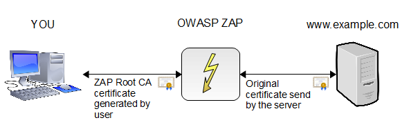 An overview of OWASP ZAP Proxy